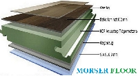 Sàn gỗ cốt xanh Morser!